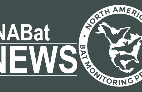 NABat News Special Edition: March 2021