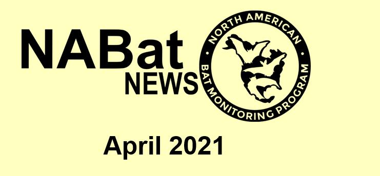 NABat News April 2021