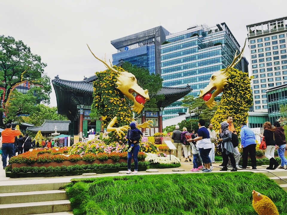 seoul city tour _201419