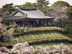 Gyeongpodae_Pavilion_Gangneung