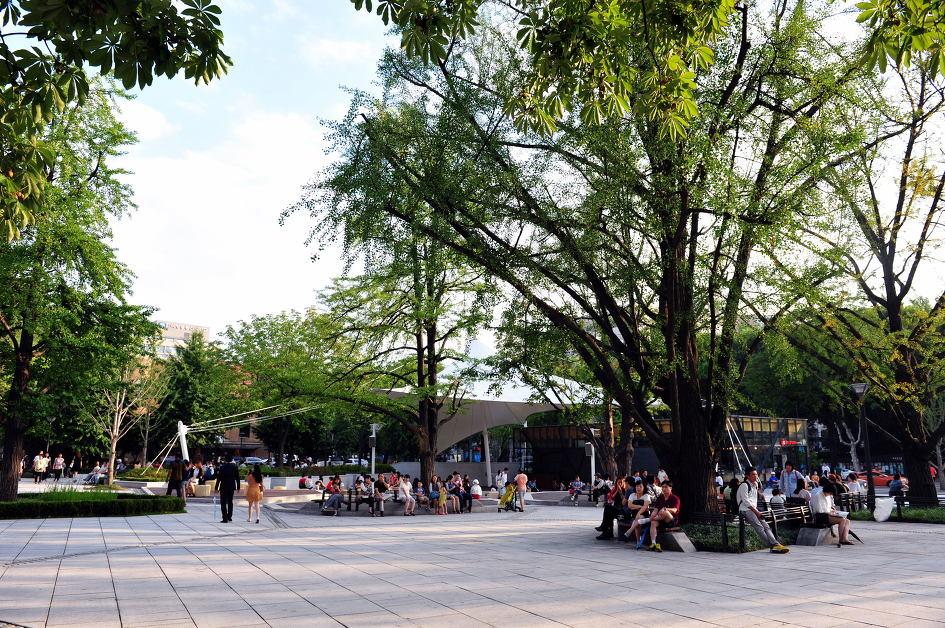 마로니에공원