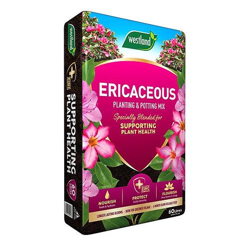 Ericaceous Planting & Potting Mix