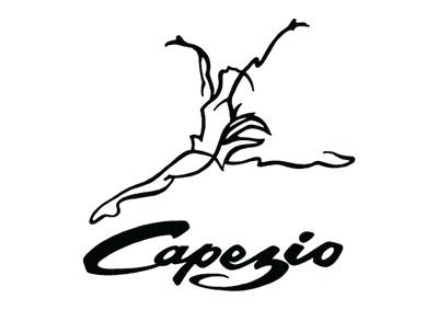 capezio logo copy