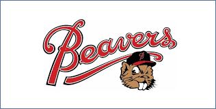 Battlefords Minor Baseball Inc.