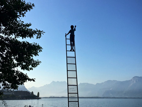 """""""All Ladder's Won't Lead to Success"""""""