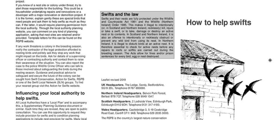 Updated RSPB Swift Leaflet
