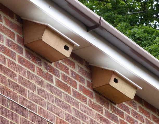 Two Zeist swift/house sparrow boxes Model 30 fitted under the eaves of a two-storey house