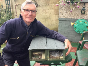 Ron Cooke with two swift boxes with ends removed to show swift nests inside.