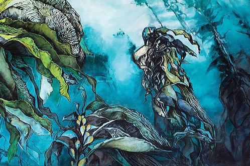 LBP012 | Kelp