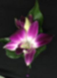 Flower design.jpg