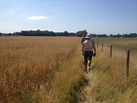 Walking to Woodchurch