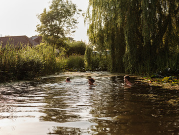 Country swimming at Green Farm