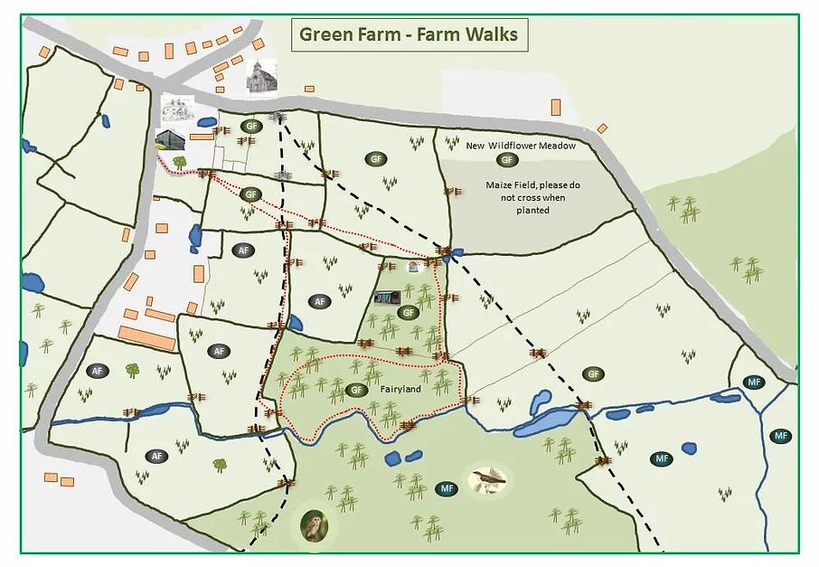 farm walk.webp
