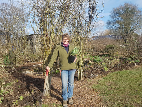 Introducing Rachel Clark, our Kitchen Garden Manager