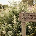 The Green Farm Community Garden