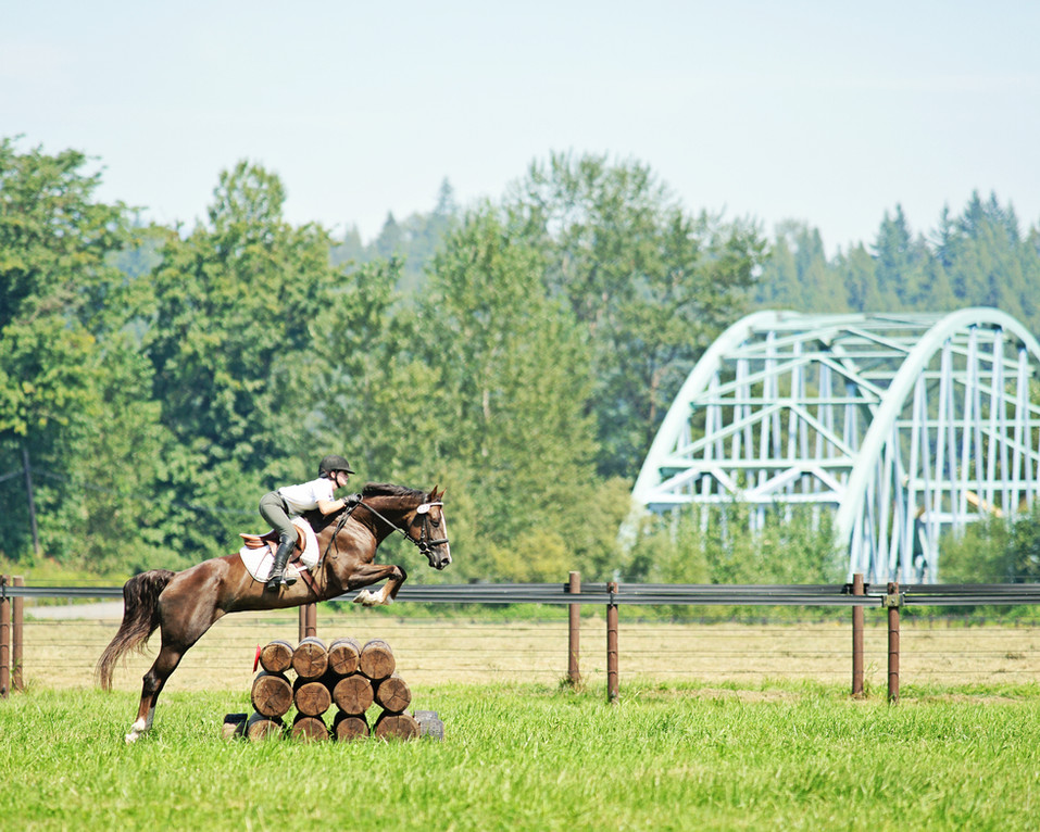 Next-Phase-Eventing-Derby-Equestrian-Pho