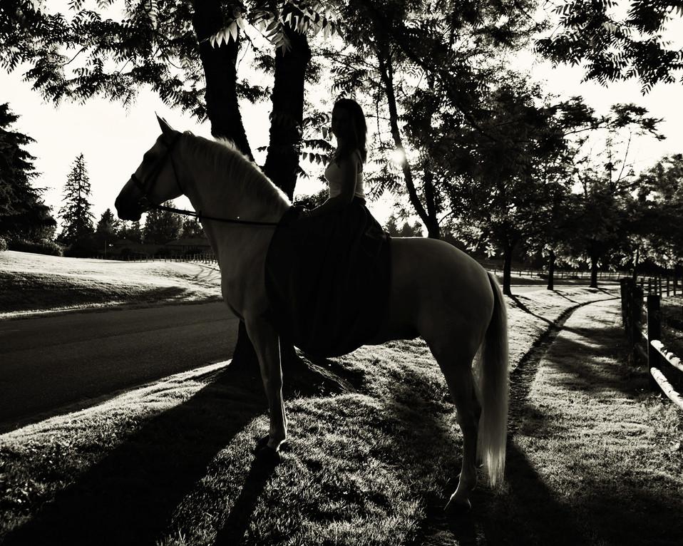 Delphine-McCracken-Photography-Misty-Mea