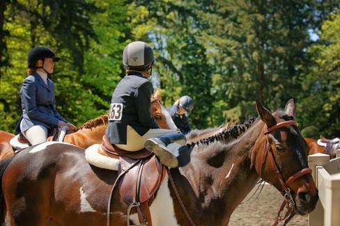 LWSC-Hunter-Horse-Show-Equestrian-Seattl