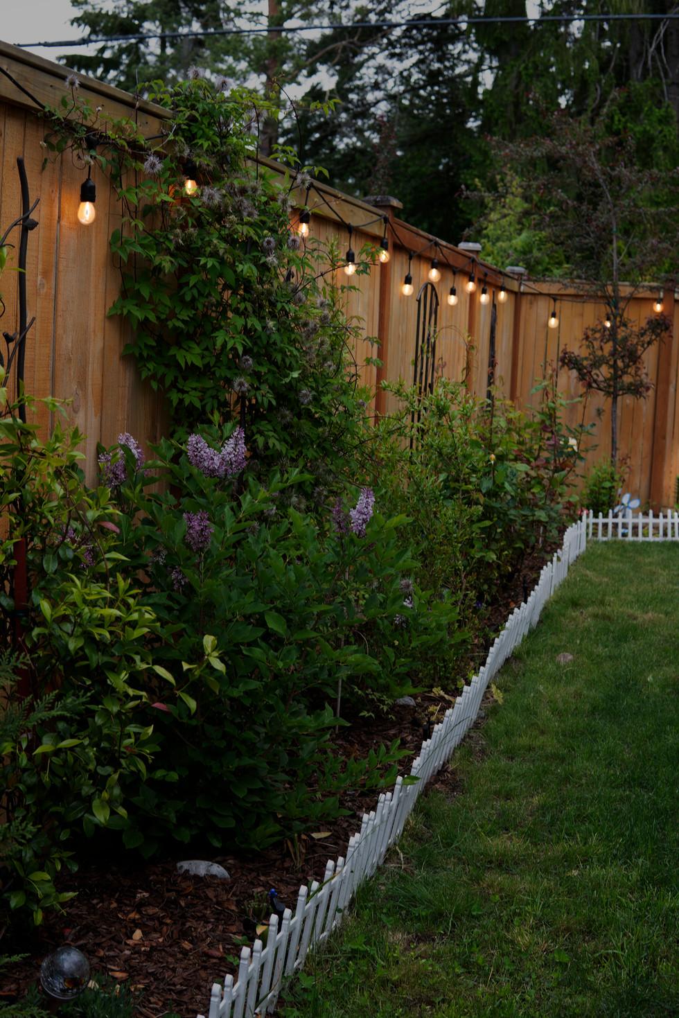 GardenNight_DSC01709.jpg