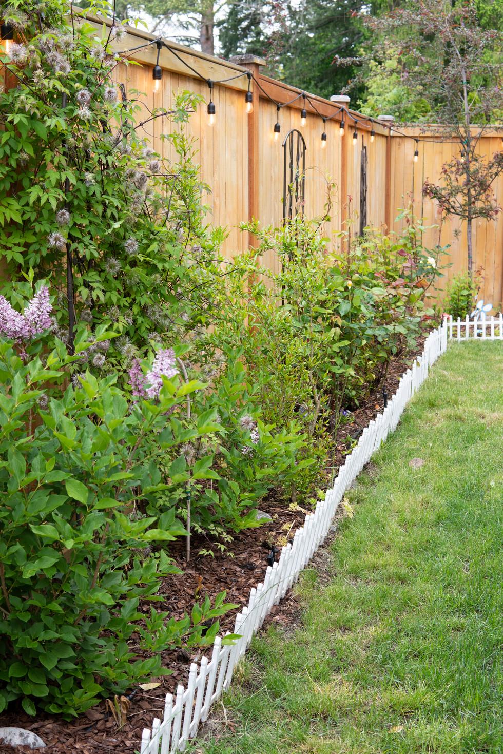 GardenPlants_DSC01733.jpg