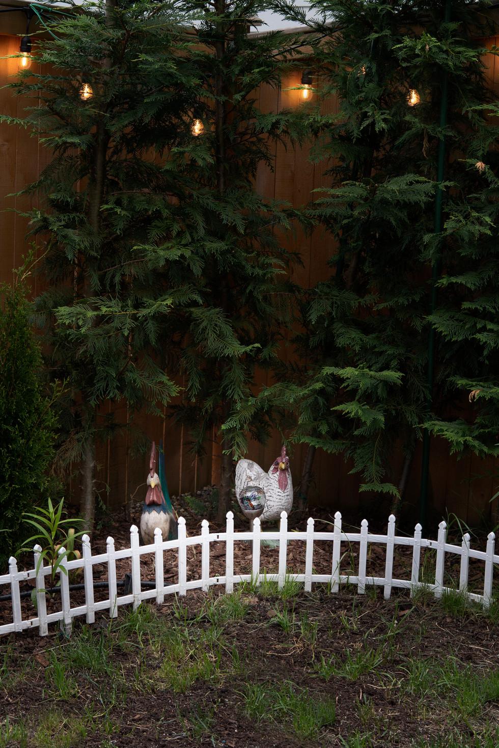 Garden_DSC01708.jpg