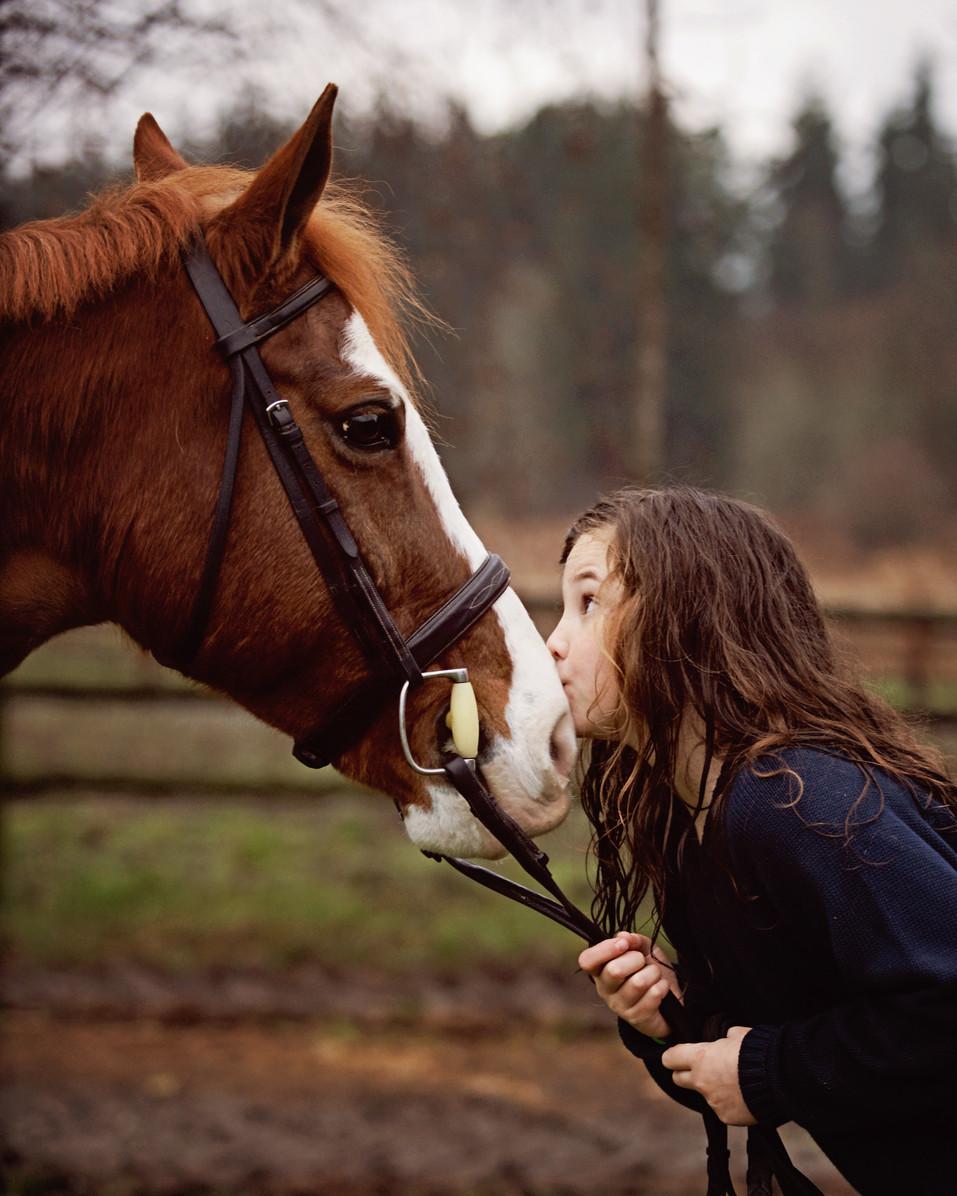 Hanna-Boomer-Seattle-equestrian-photogra