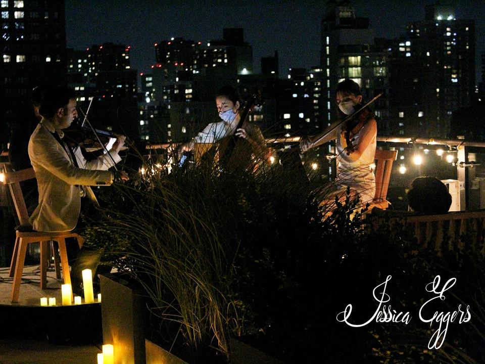 Highline String Quartet