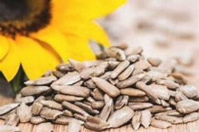 Roasted salted Sunflower Seeds - 2 scoops