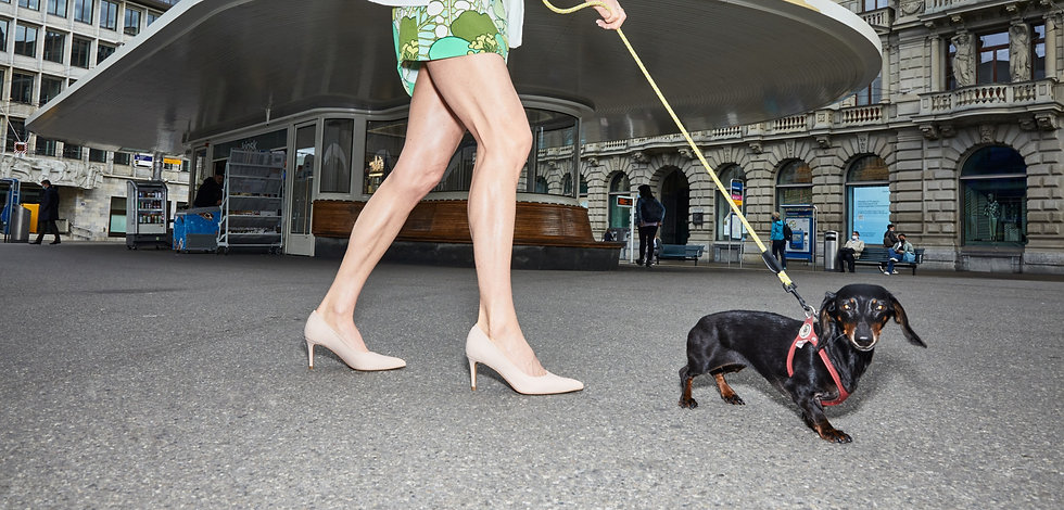 SASHAY vegan sexy shoes ALLY Pump 7cm Apfelleder beige Paradeplatz Zurich_edited.jpg