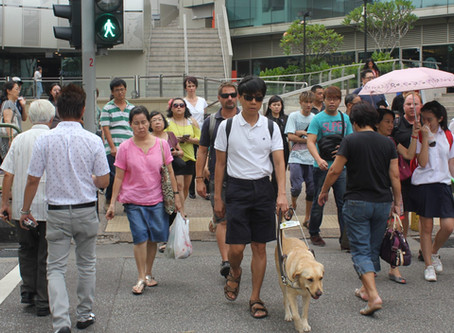 Guide Dogs Singapore give quality of life to the visually impaired