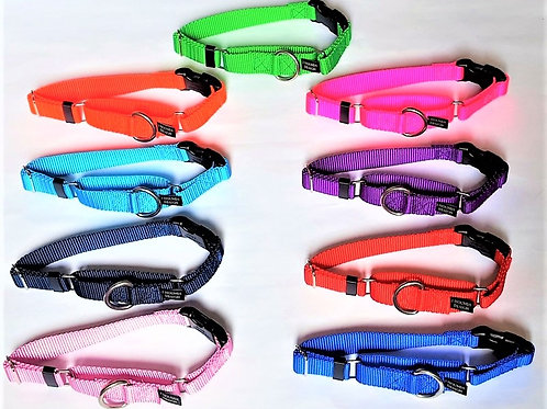 2Hounds Buckle Martingale Collar