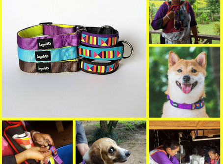 Reasons for using a Martingale collar for dogs
