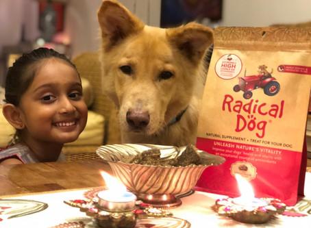 Healthy dog treats to add cheer this festive season & beyond