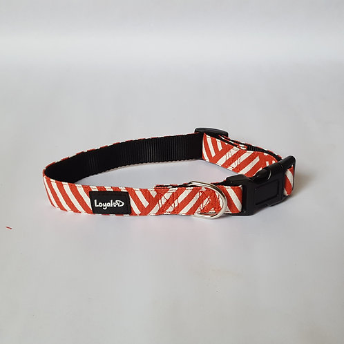 Canvas.D Collar - Foxy Red - 1 inch width
