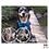 Thumbnail: Pawtection - Natural Dog Company