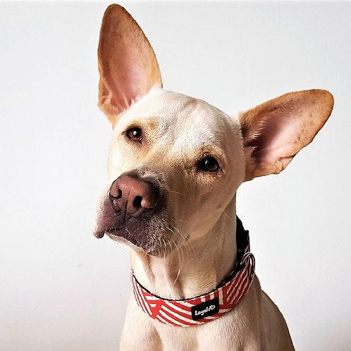 Wide Canvas Dog Collar