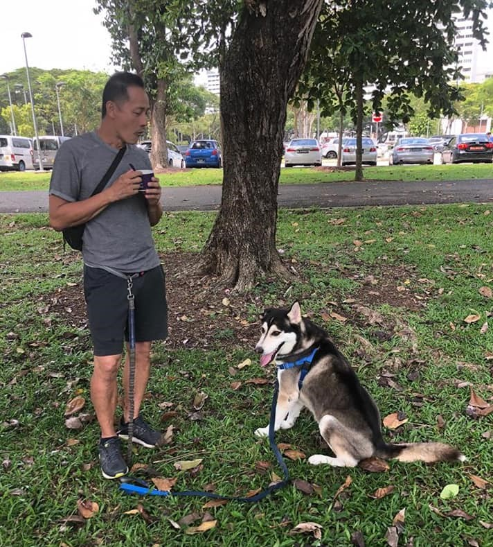 Training with adopted Husky Snow