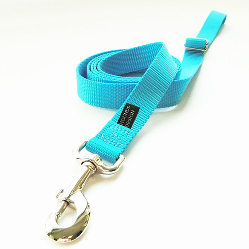 2Hounds Keystone Nylon Leash - Turquoise