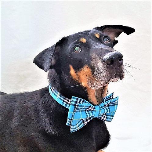 Turquoise Plaid Bow Tie & Collar Set
