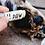 Thumbnail: Paw Soother - Natural Dog Company