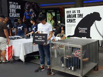 Animal Welfare as Part of Our National Conscious