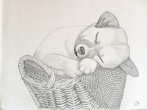 Puppy in Basket Ink on Canvas