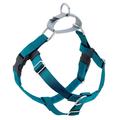 FREEDOM No-Pull Harness and Leash -Teal / Silver