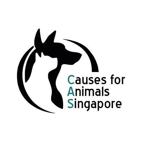 Donate to CAS (Causes for Animals)