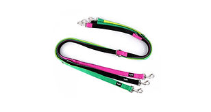 Loyal.D Multi-Purpose.D Dog leash.jpg
