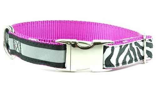 Urban Zebra - Buckle OR Martingale Collar