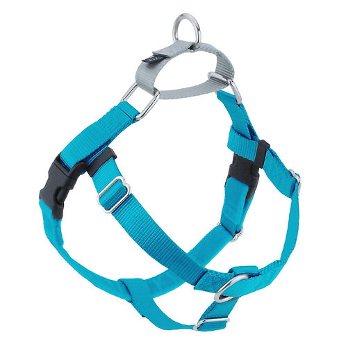 FREEDOM No-Pull Harness & Leash - Turquoise/Silver