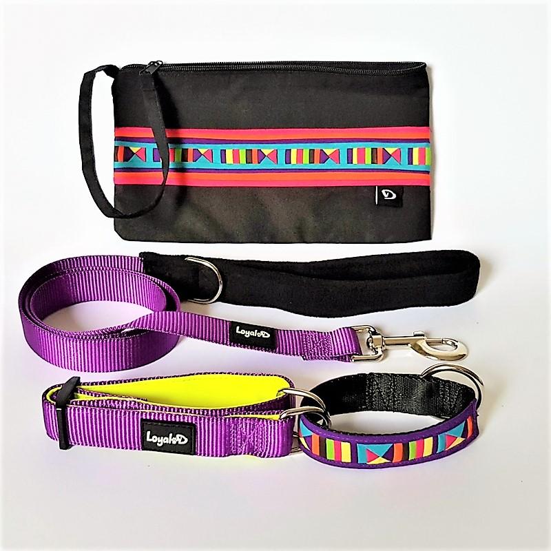 Martingale Collar & Leash Set