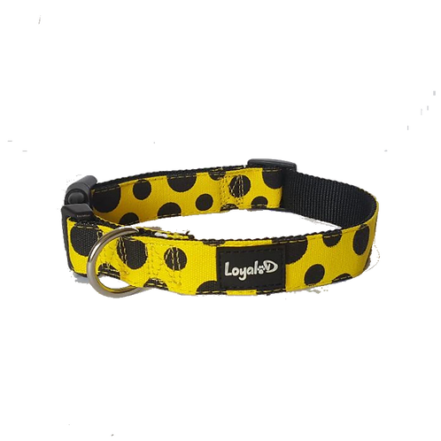 Loyal.D Canvas.D Collar Get Spott.D (Yellow) - WIDE 1.5 inch width