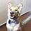 Thumbnail: Purple Plaid Bow Tie & Collar Set